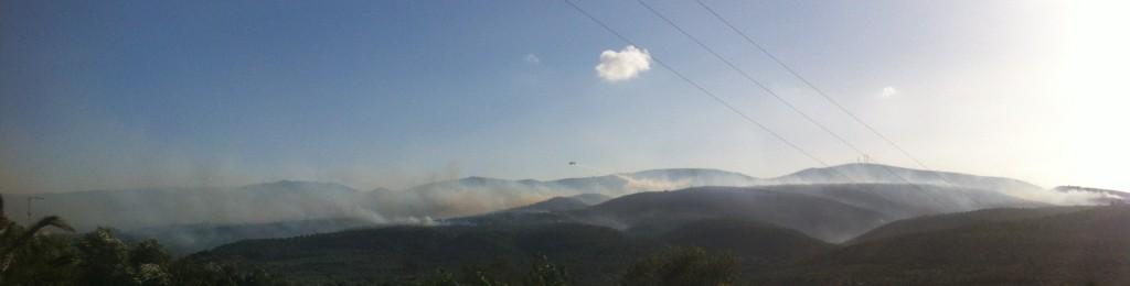 Buschbrand in Harakopio 2013