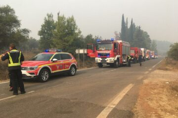 Kollone der Feuerwehrfahrzeuge in einem Wald voll Rauchschwaden
