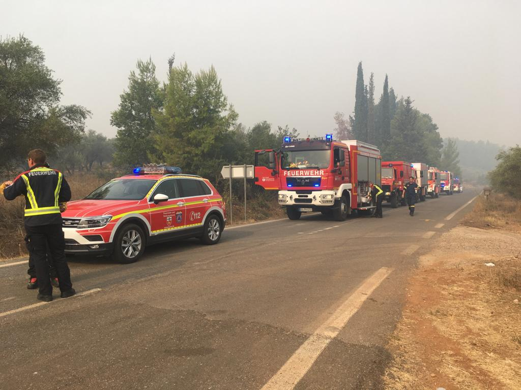 Kolonne der Feuerwehrfahrzeuge in einem Wald voll Rauchschwaden